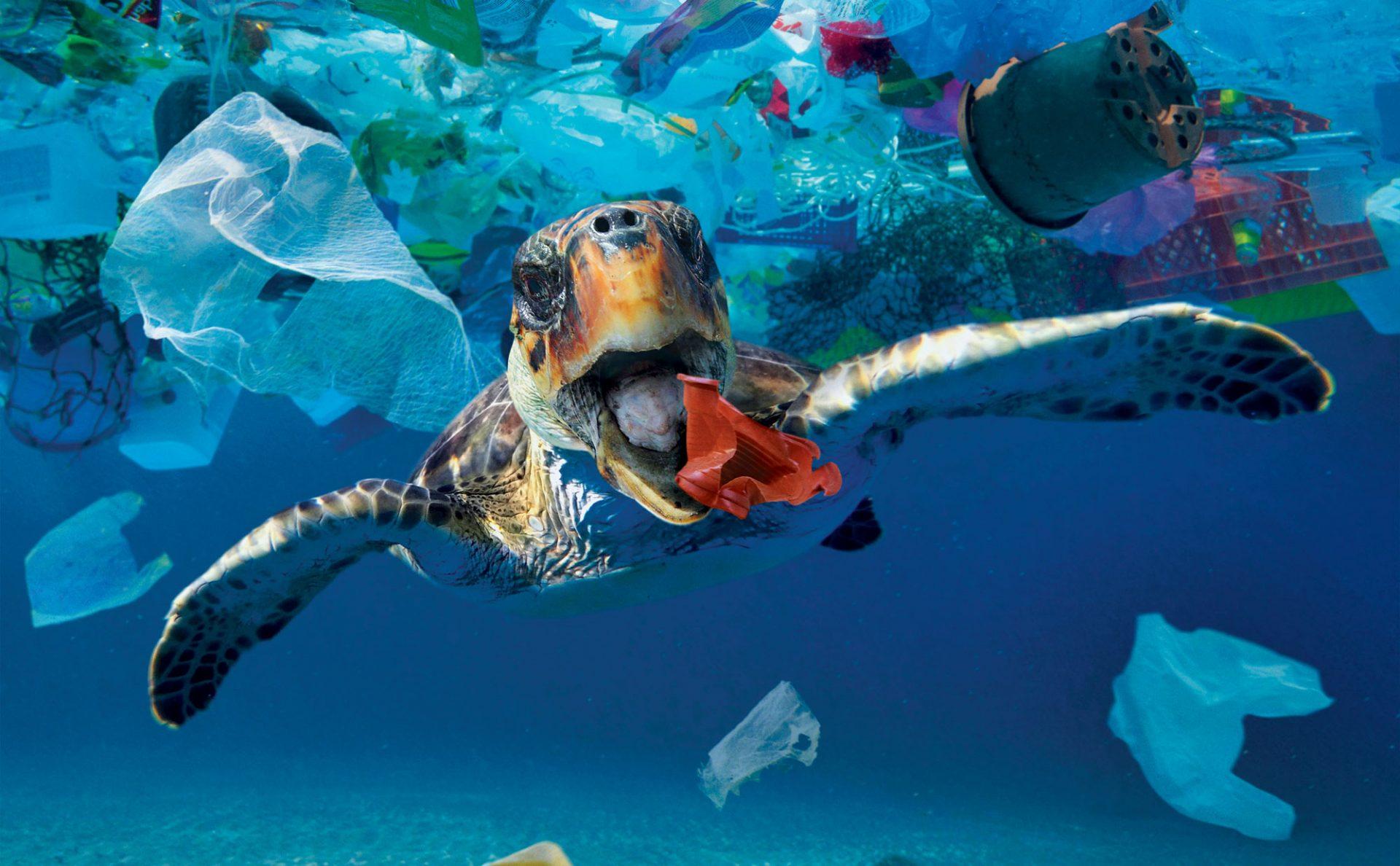 Slik blir vi kvitt plasten i havet