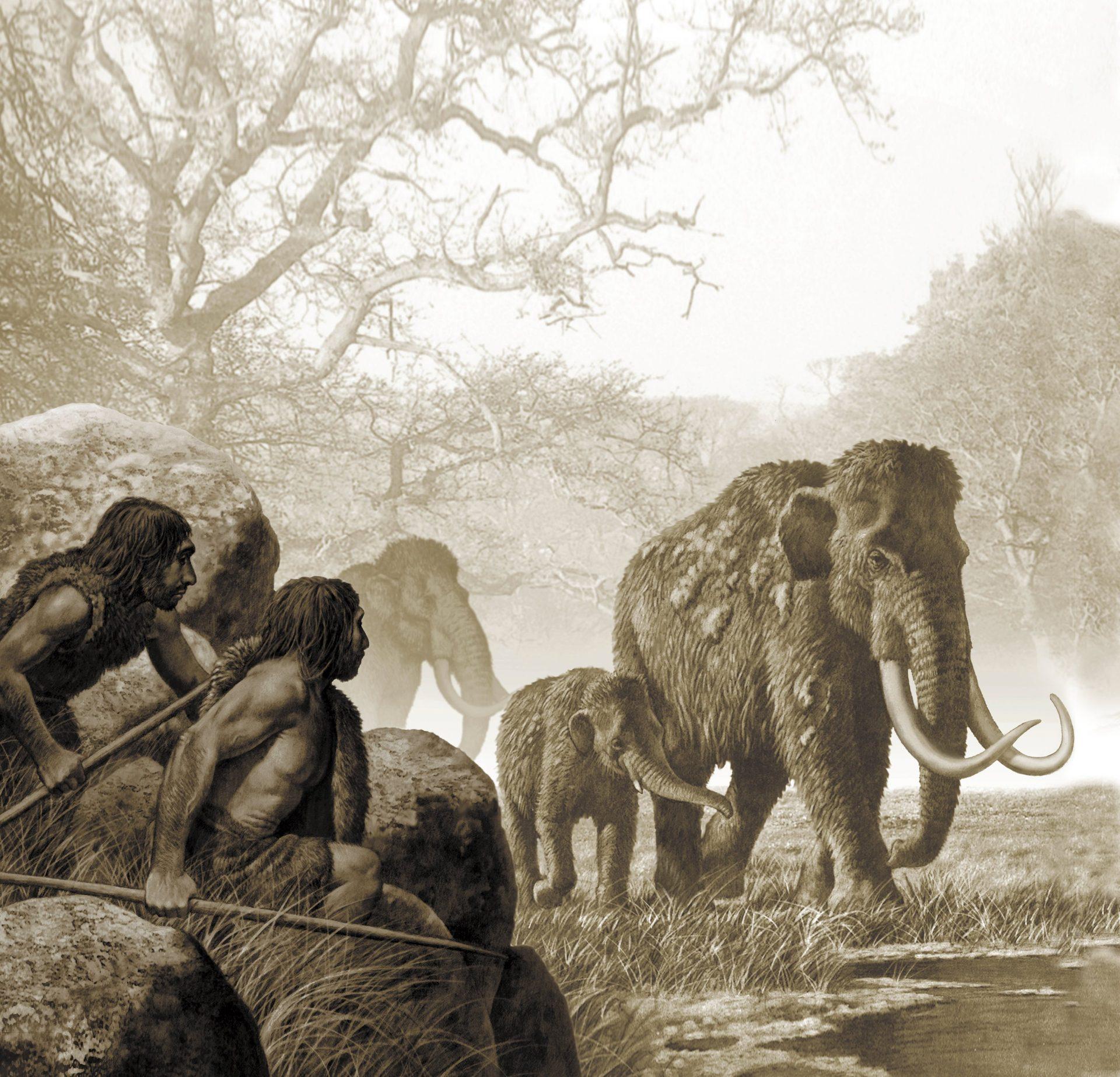 Mammutjakt