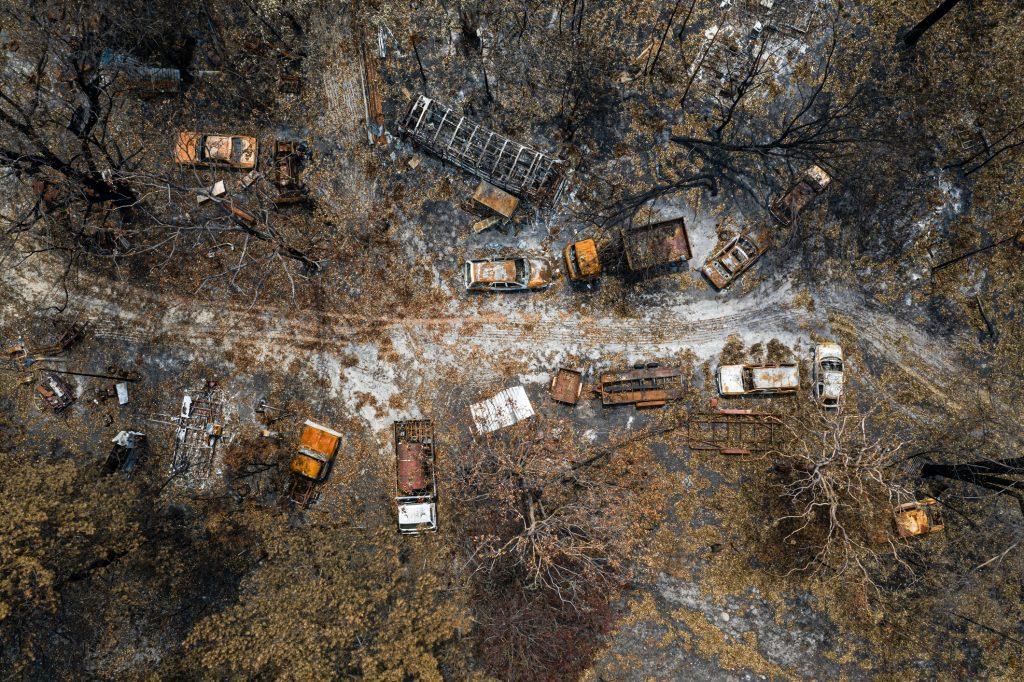 Skogbrann skader
