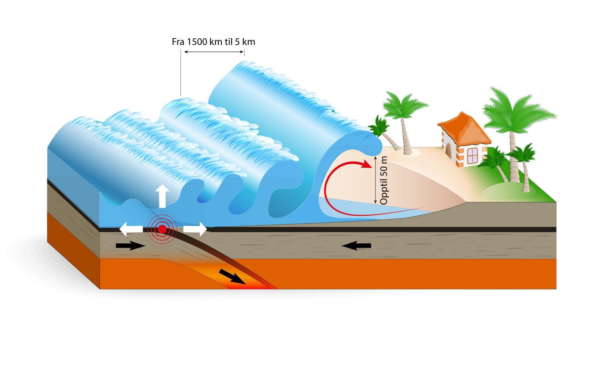 Tsunami illustrert