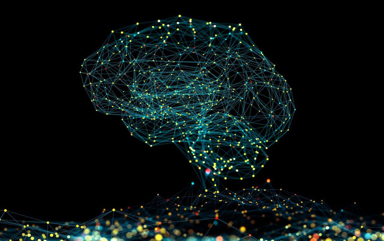 En digital hjerne