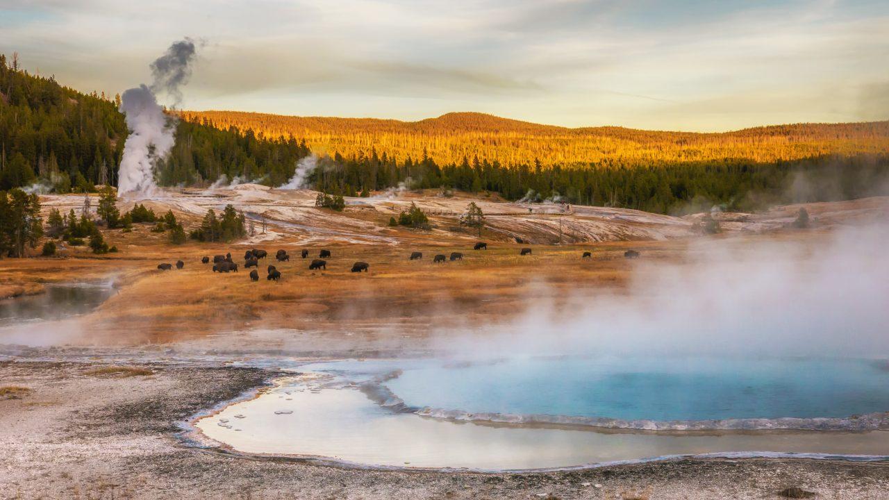 Geysir Yellowstone National Park, Wyoming, USA.