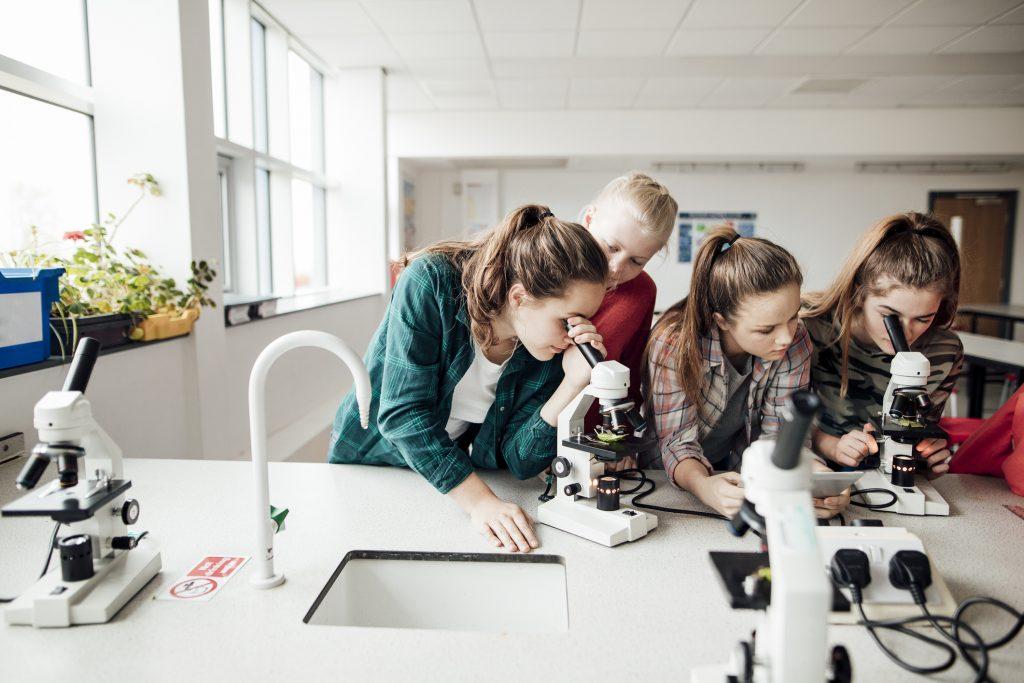 En gruppe skoleungdom som undersøker med mikroskop