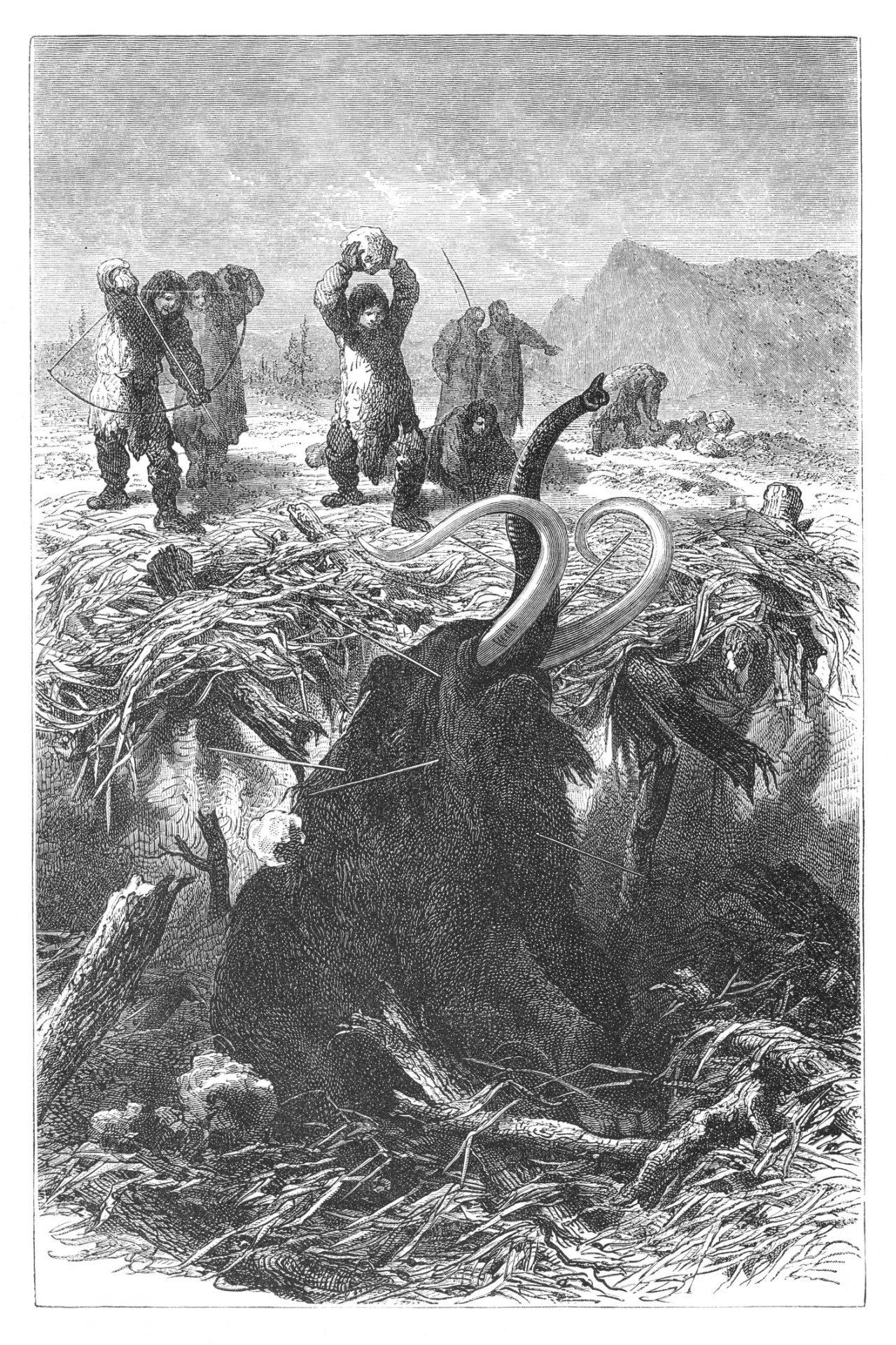 Jakt i steinalderen