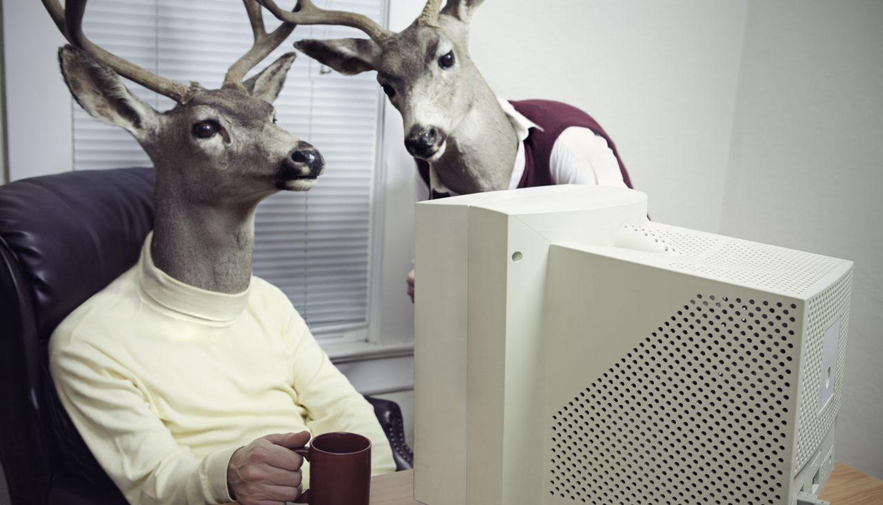 To menneskefigurer med hjortehoder sitter foran PC og ser på noe sammen.