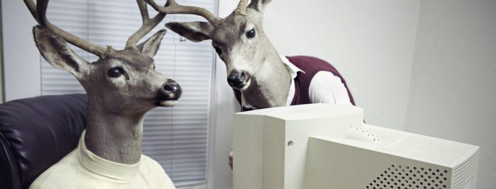 Menneskeskikkelser med hjortehoder foran PC
