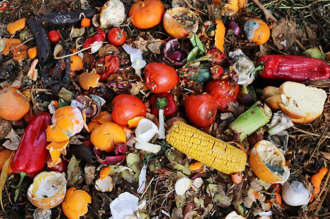 Kastede matrester på søppeldynga