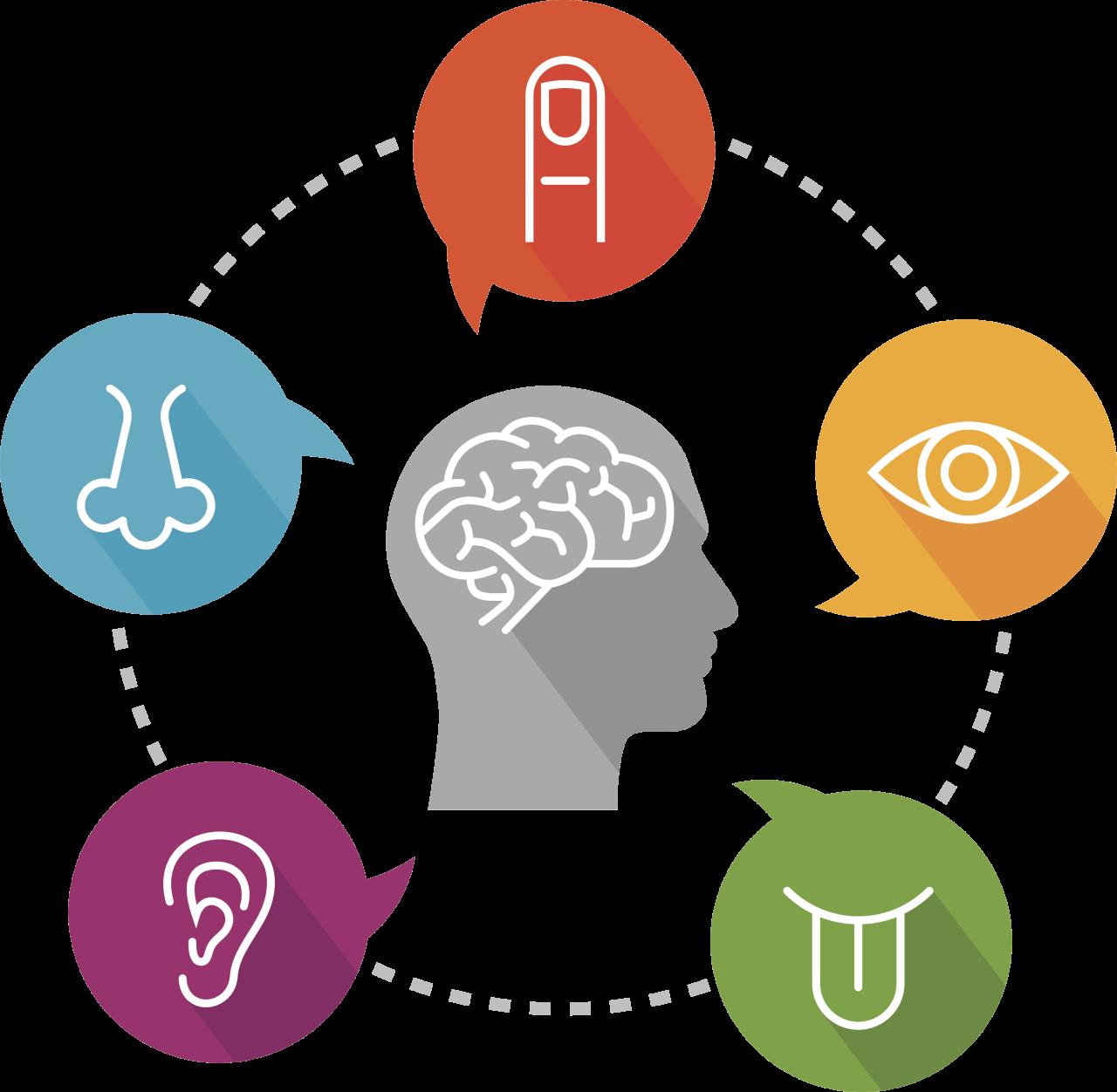 Illustrasjon av sansesystem