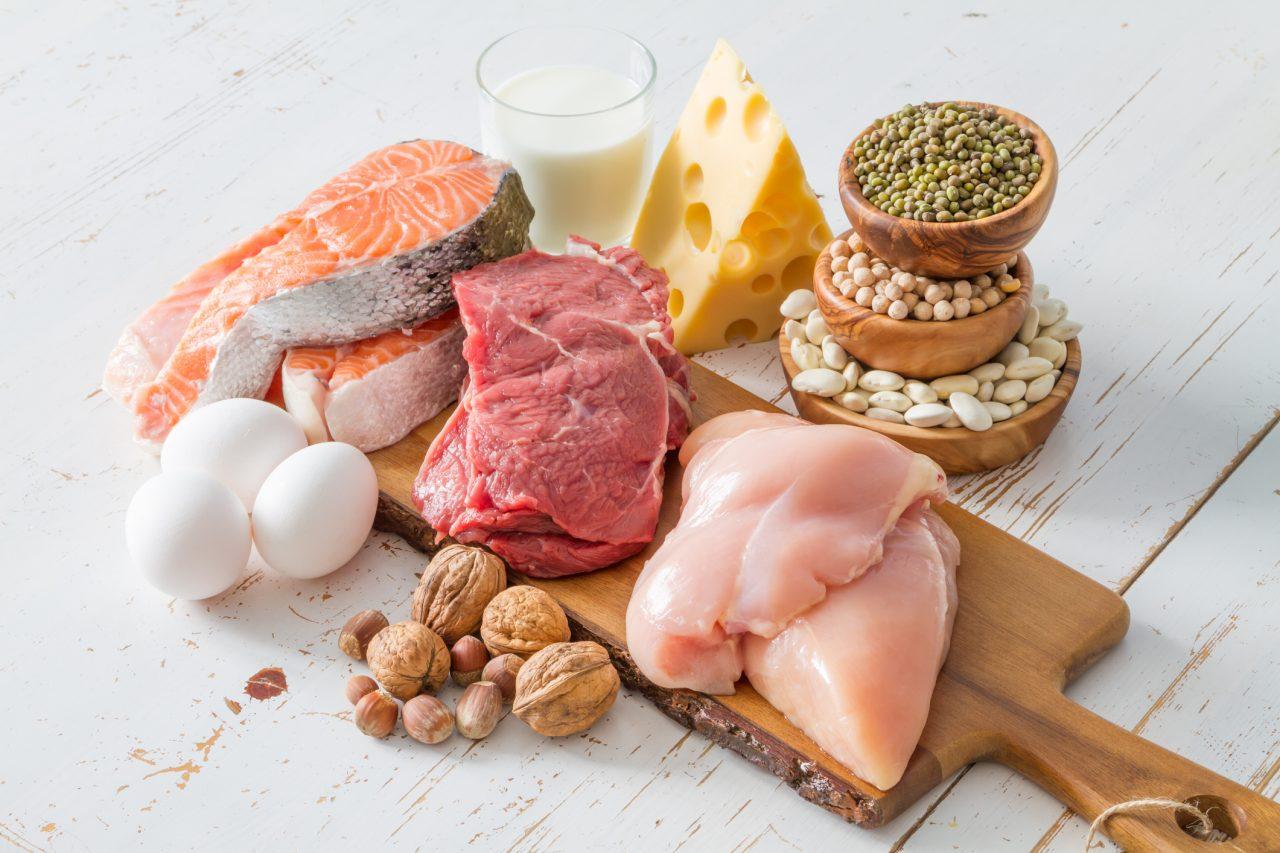 Proteinrik mat